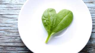 spinach-heart-cells-5.jpg
