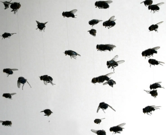 10f8bc216b7d6121fc329861a0044cd9_swarmofinsectsjpg-swarm-of-flies-clipart_565-461.jpeg