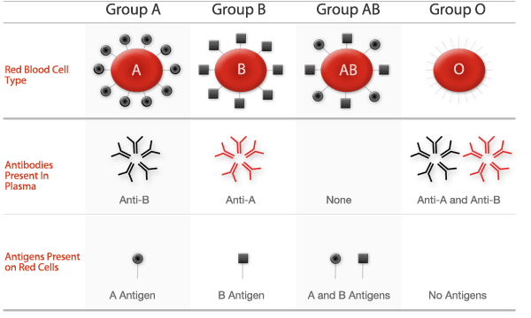 blood-group-large