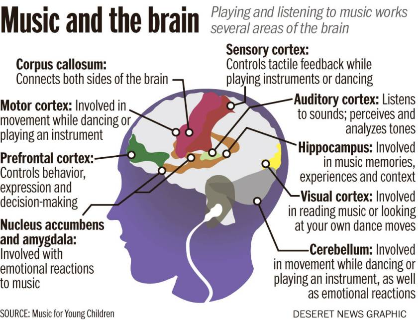 Brain-on-music (1)