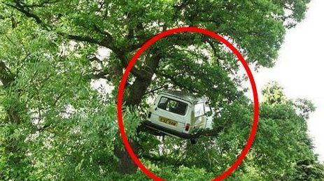 Funny-Car-Accident-On-Tree-In-India.jpg